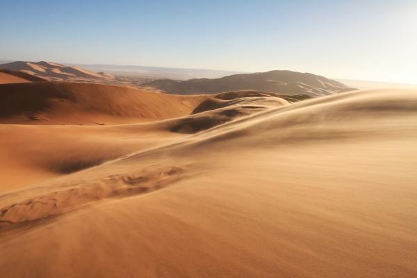 Dubai desert activities