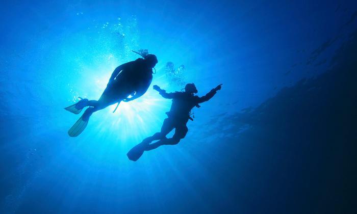 Scuba Diving Dubai  1