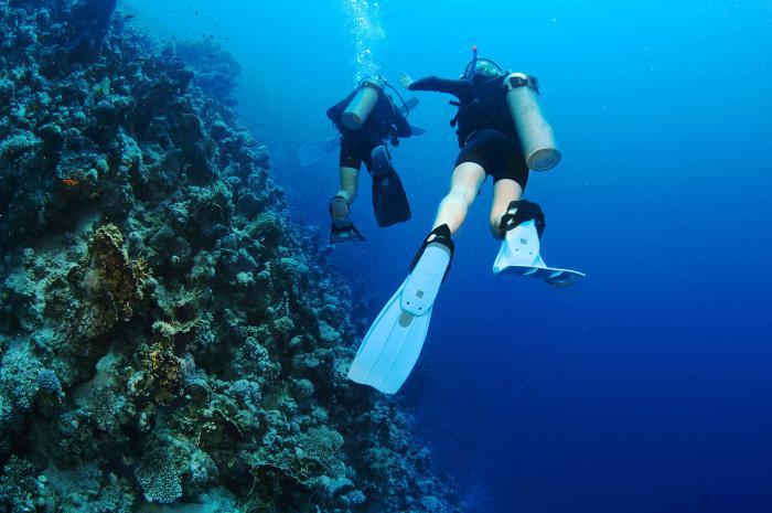 Scuba Diving Dubai 3
